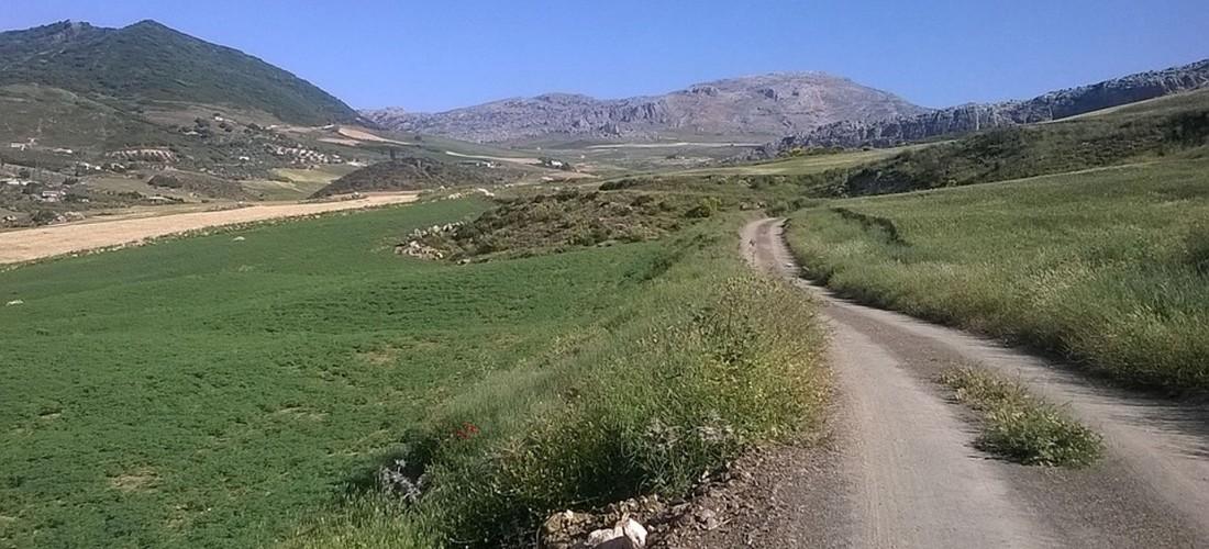 ¿Haces el Camino de Santiago en verano? Presta atención…